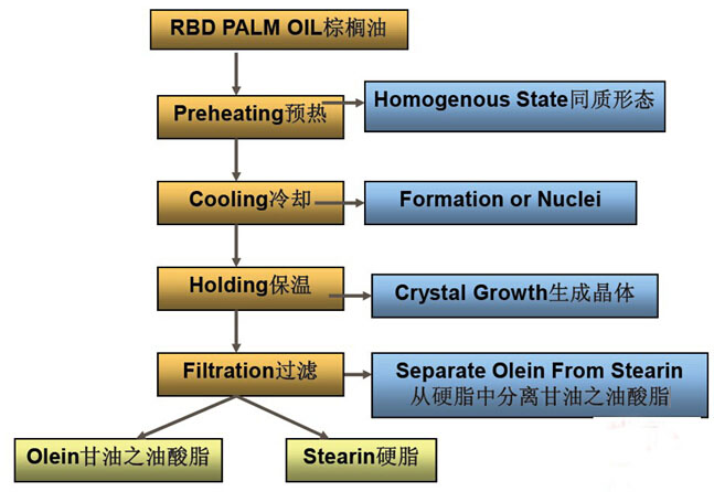 Palm oil fractionation process chart
